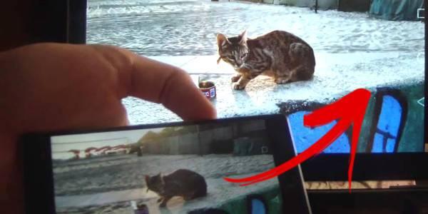 <u>Collegare</u> <u>Huawei</u> P8 alla TV