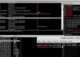 La password di Wannacry per sbloccare il PC, il virus che sta bloccando il pc di mezzo mondo.